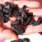 Goraka Meyvesi İle Zayıflama